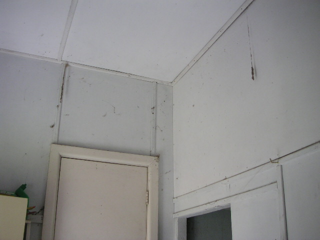 Fibro Walls And Ceilings Inside
